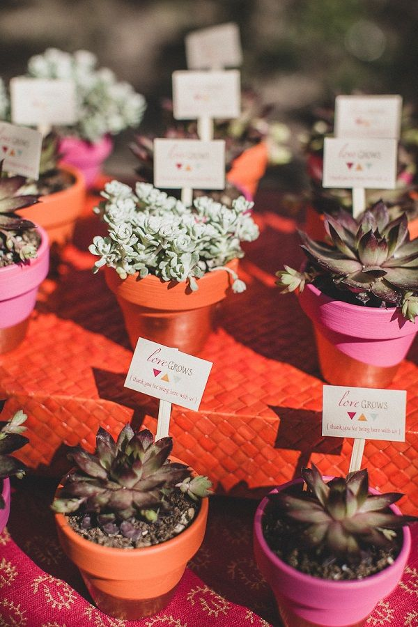 Mini Flower Pots For Wedding Favors - Flowers Healthy
