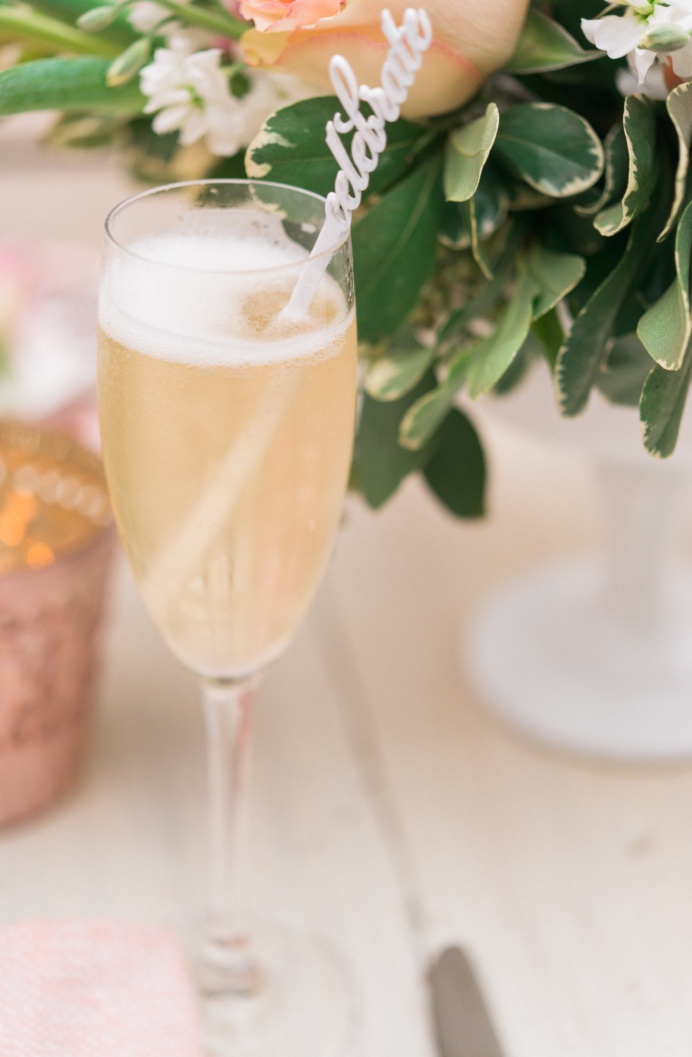 View More: http://dyankethleyphotographer.pass.us/amandas-surprise-bridal-shower